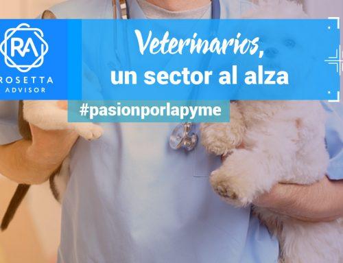 El crecimiento de la veterinaria en España. El auge de 2017