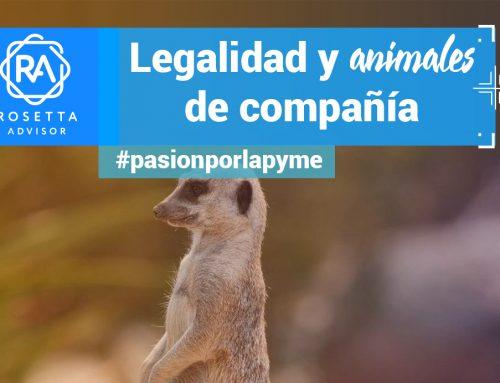 Mascotas invasoras: la ley más allá del animal de compañía