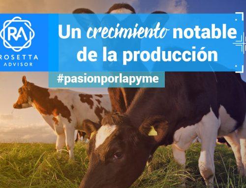En busca de una ganadería sostenible