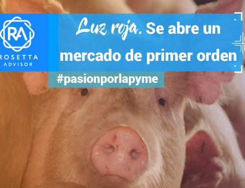 España, atenta al mercado chino para la exportación de carne de cerdo